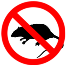 mice and rat exterminator in hamilton