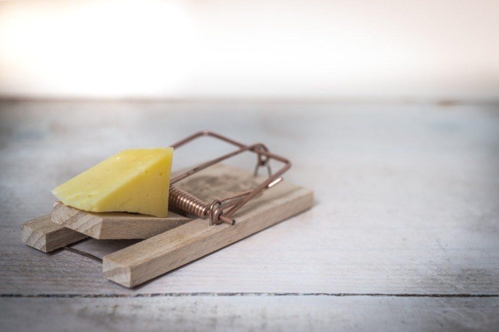 How Do Reusable Mouse Traps Work?