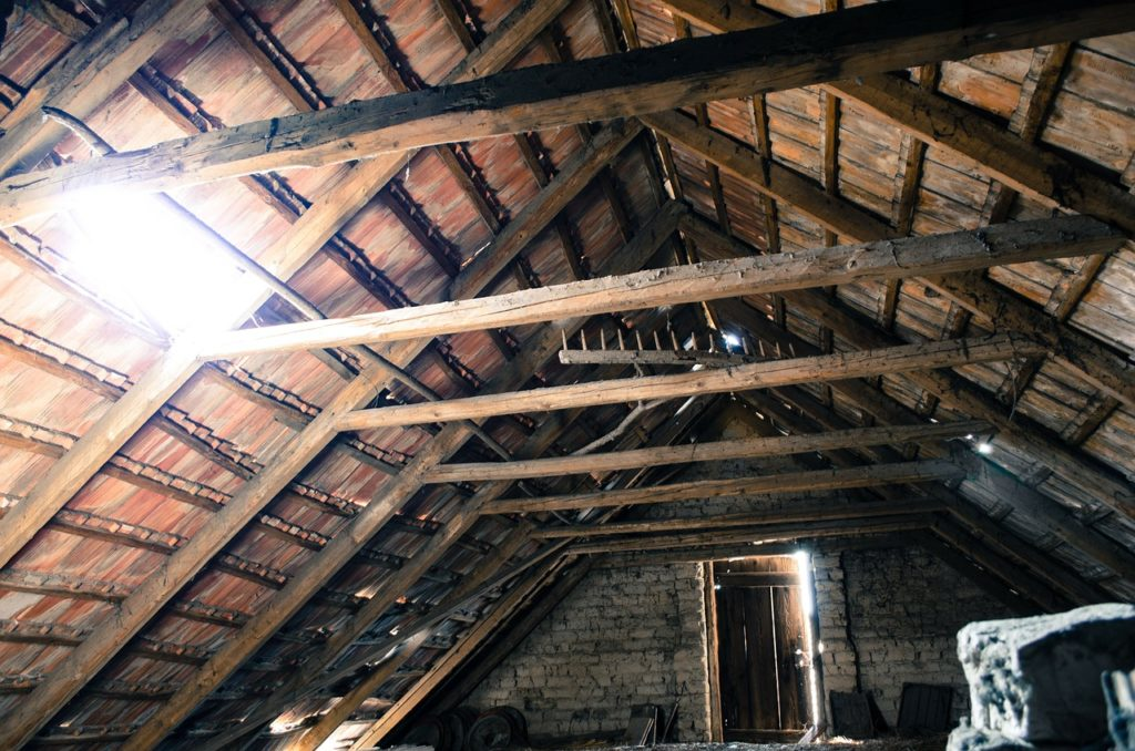 How Do Roof Rats Get In Attic?