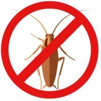 cockroach exterminator Hamilton